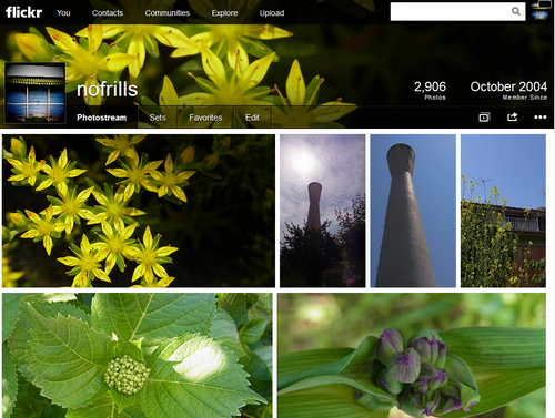 flickr-renewal